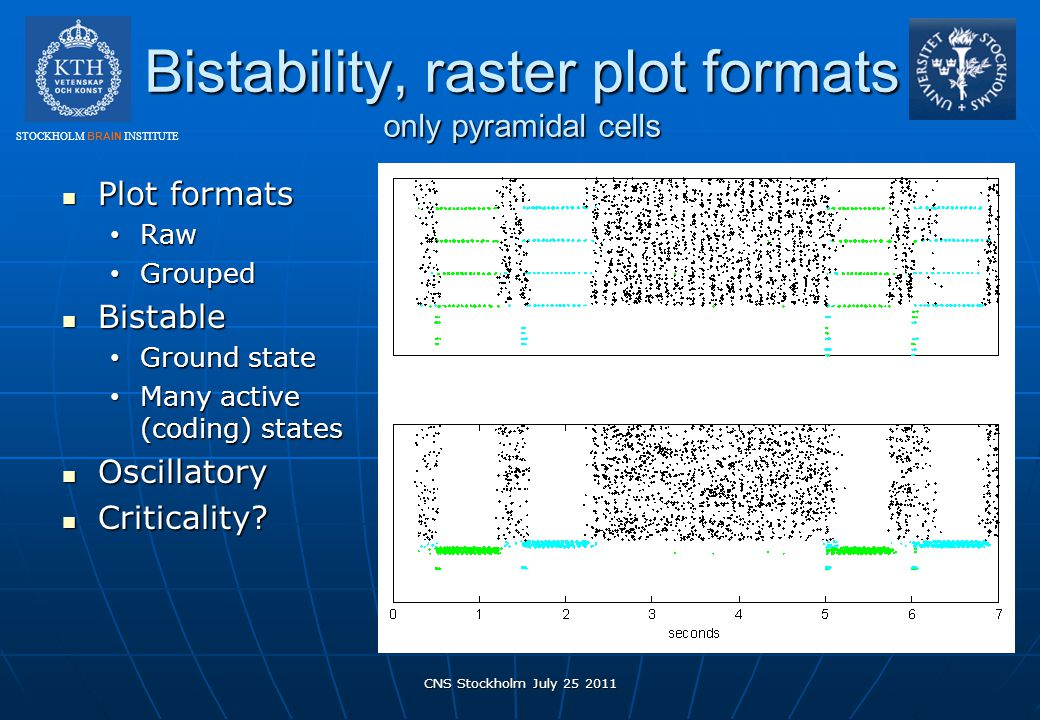 Bistability, raster plot formats only pyramidal cells