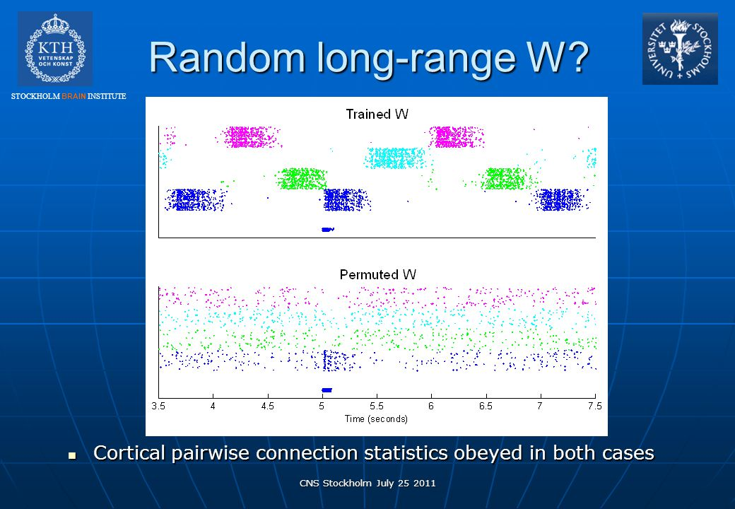 Random long-range W. Cortical pairwise connection statistics obeyed in both cases.