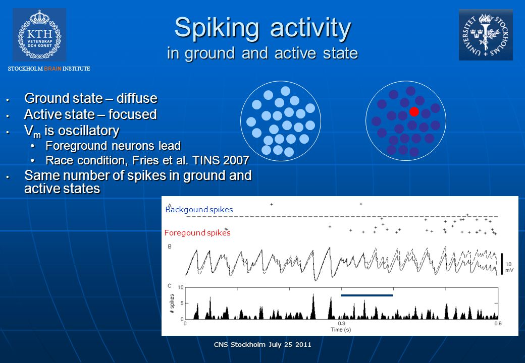 Spiking activity in ground and active state