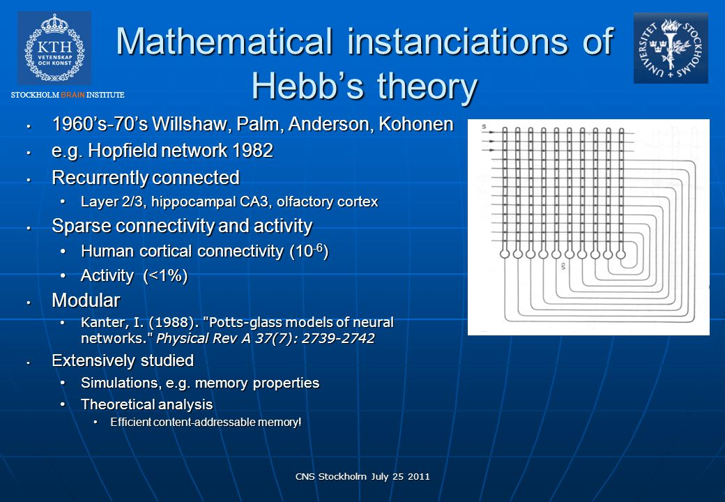Mathematical instanciations of Hebb's theory