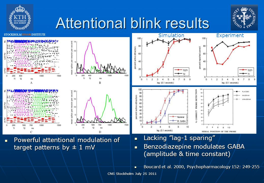 Attentional blink results