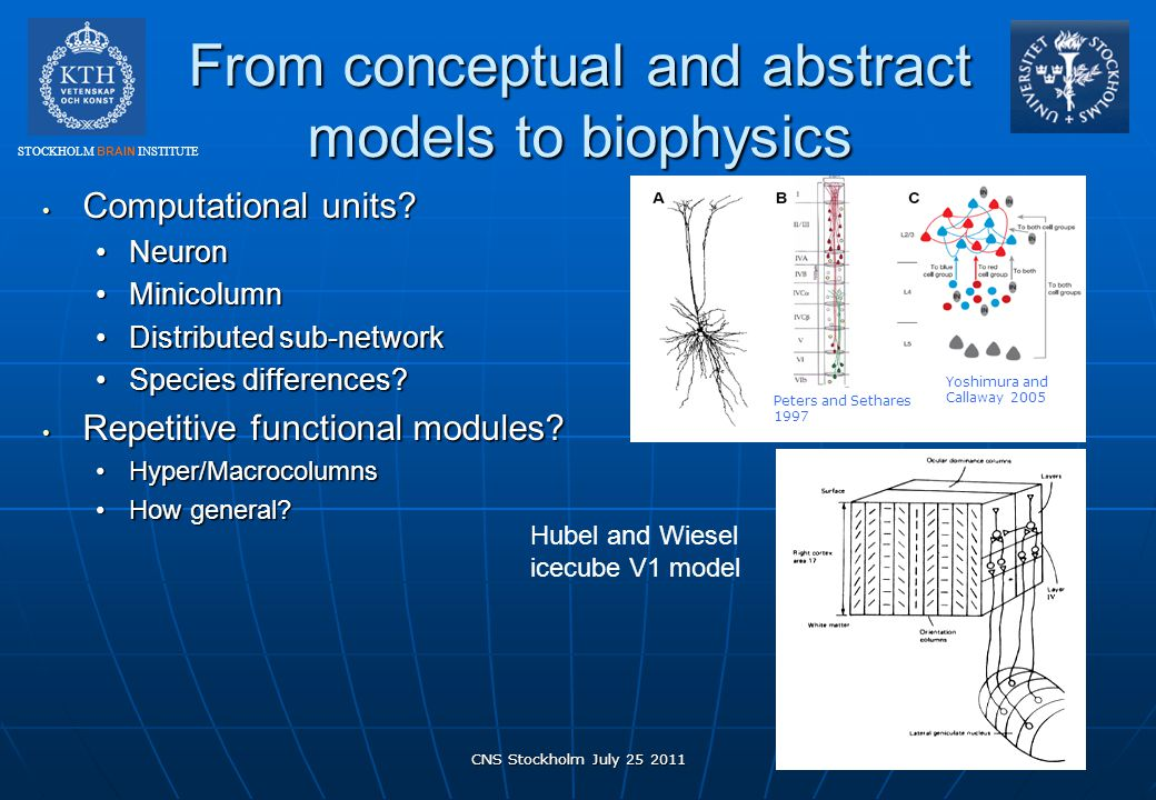 From conceptual and abstract models to biophysics