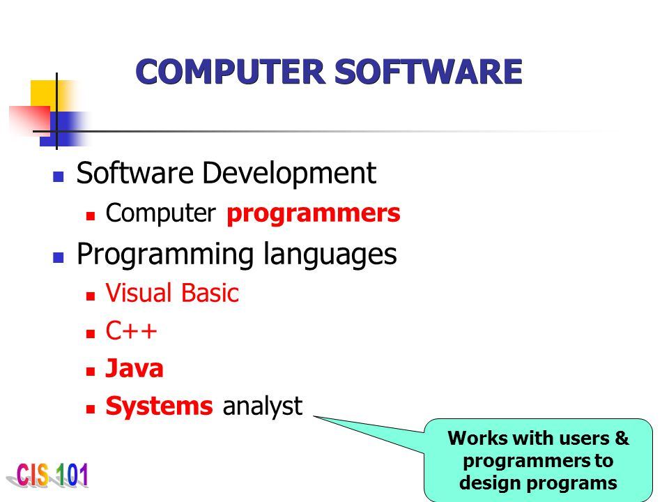 Works with users & programmers to design programs