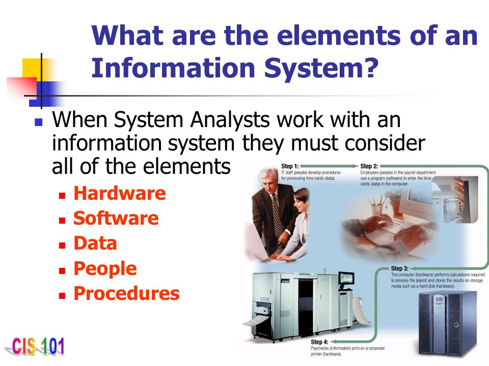 What are the elements of an Information System