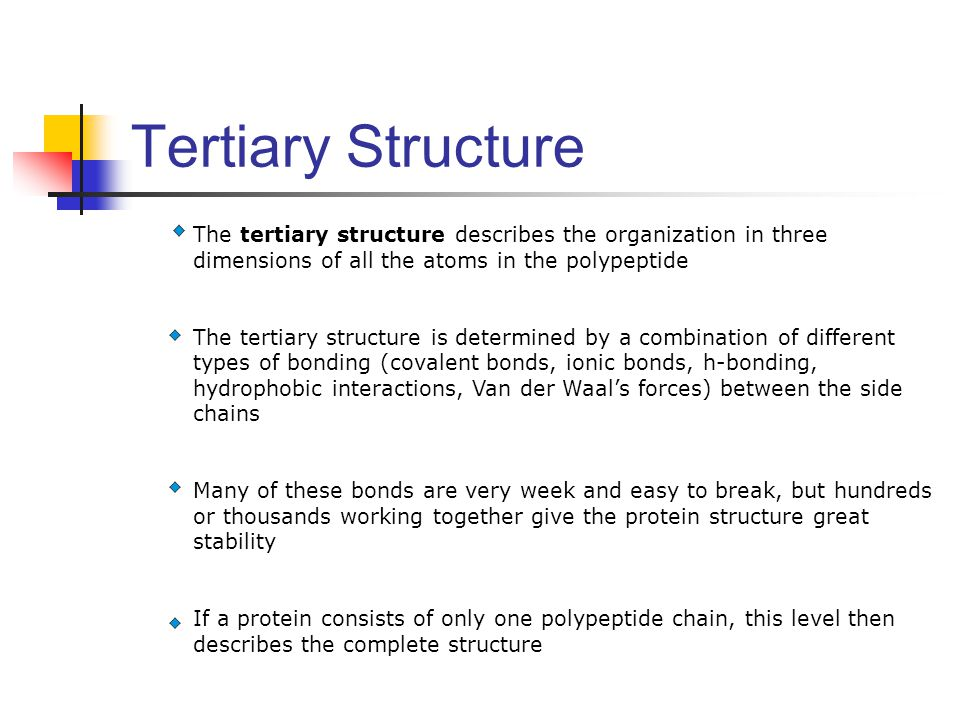 Tertiary Structure The tertiary structure describes the organization in three dimensions of all the atoms in the polypeptide.