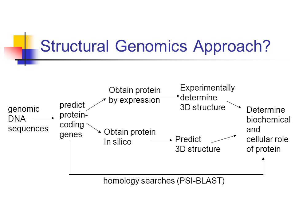 Structural Genomics Approach