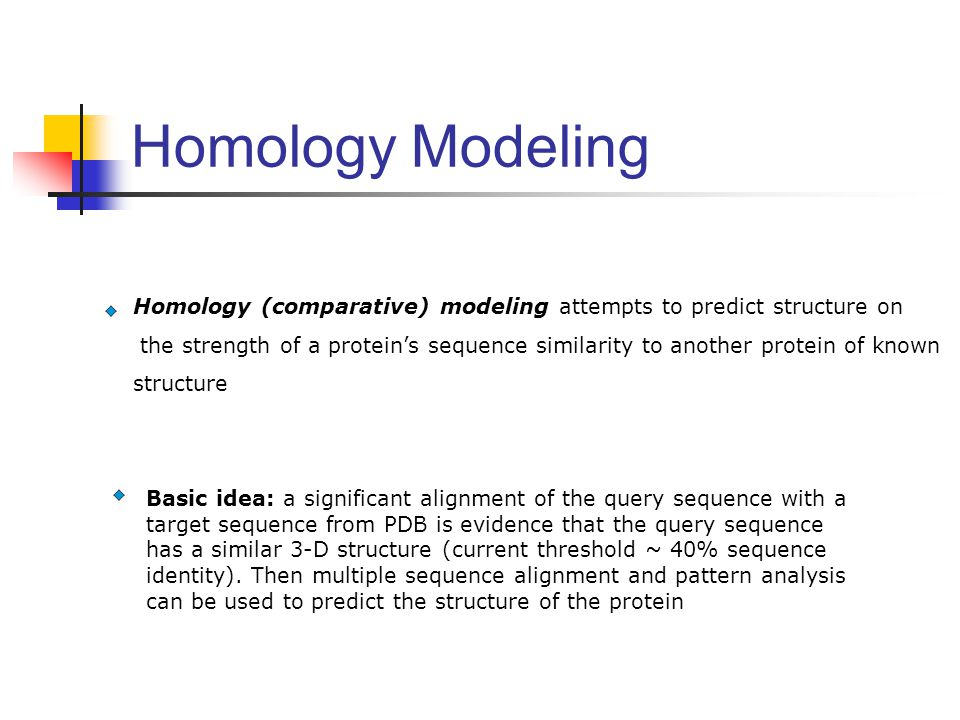 Homology Modeling Homology (comparative) modeling attempts to predict structure on.