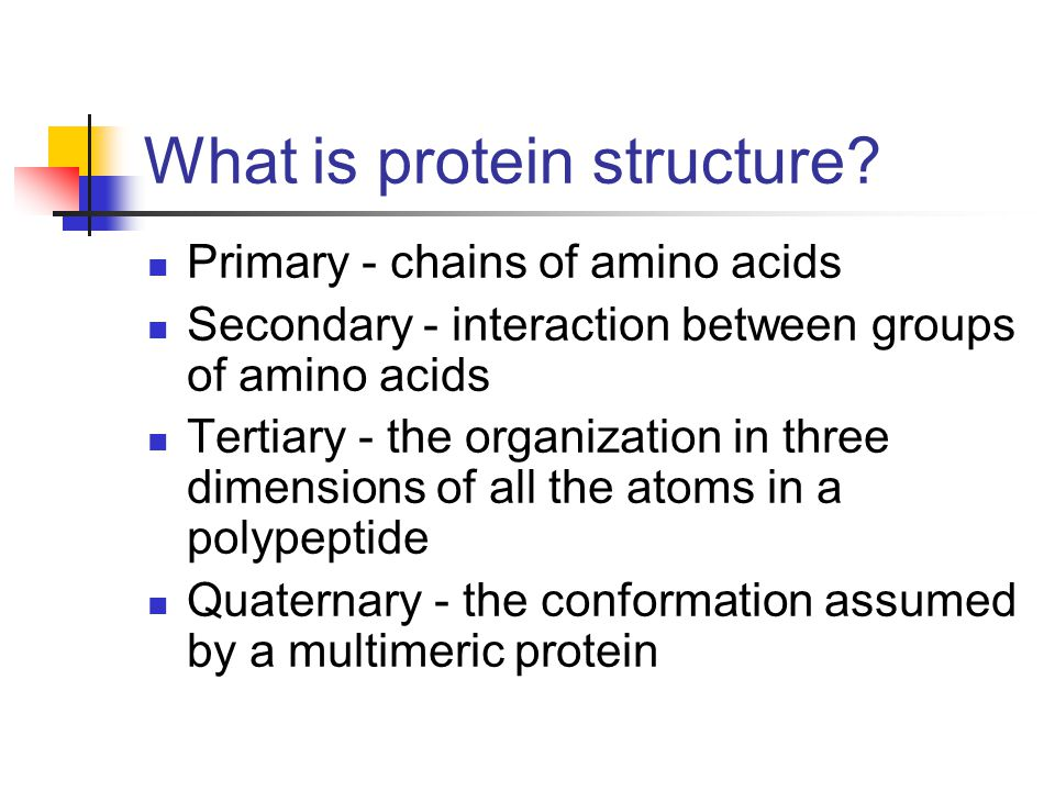 What is protein structure
