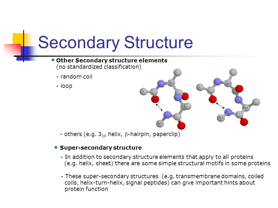 Secondary Structure Other Secondary structure elements (no standardized classification) - random coil.