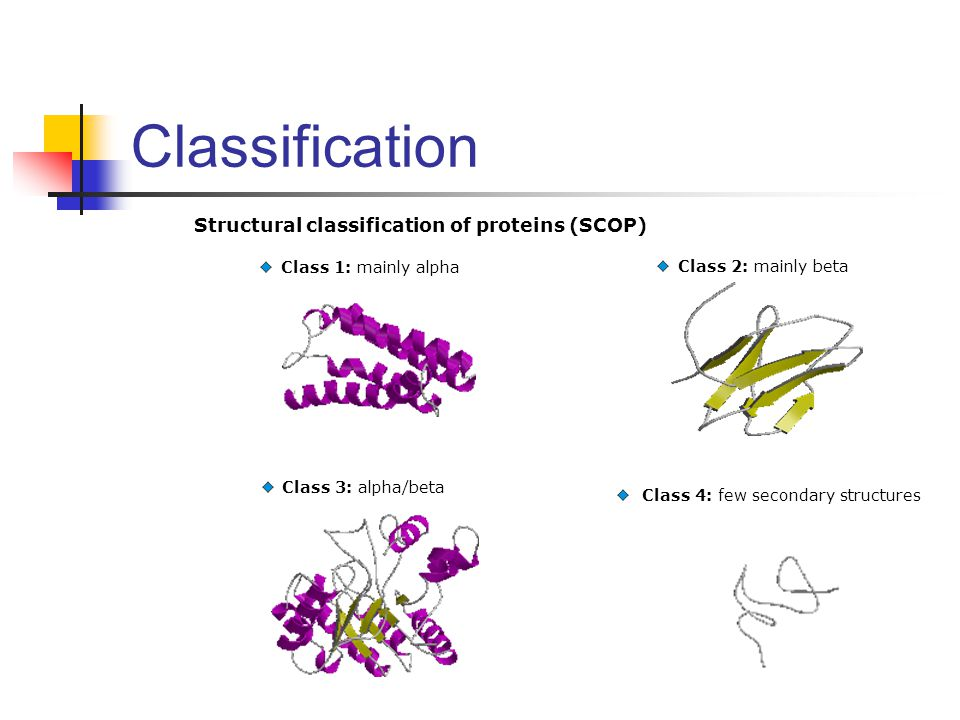 Classification Structural classification of proteins (SCOP)