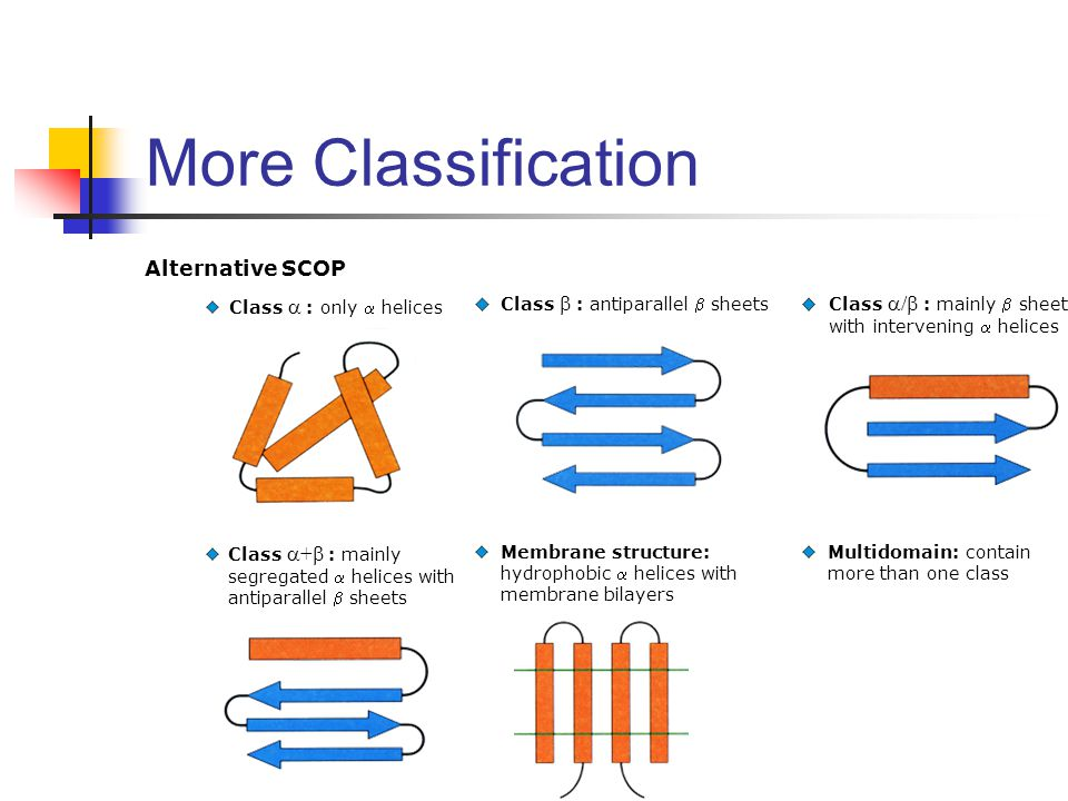 More Classification Alternative SCOP Class  : only  helices