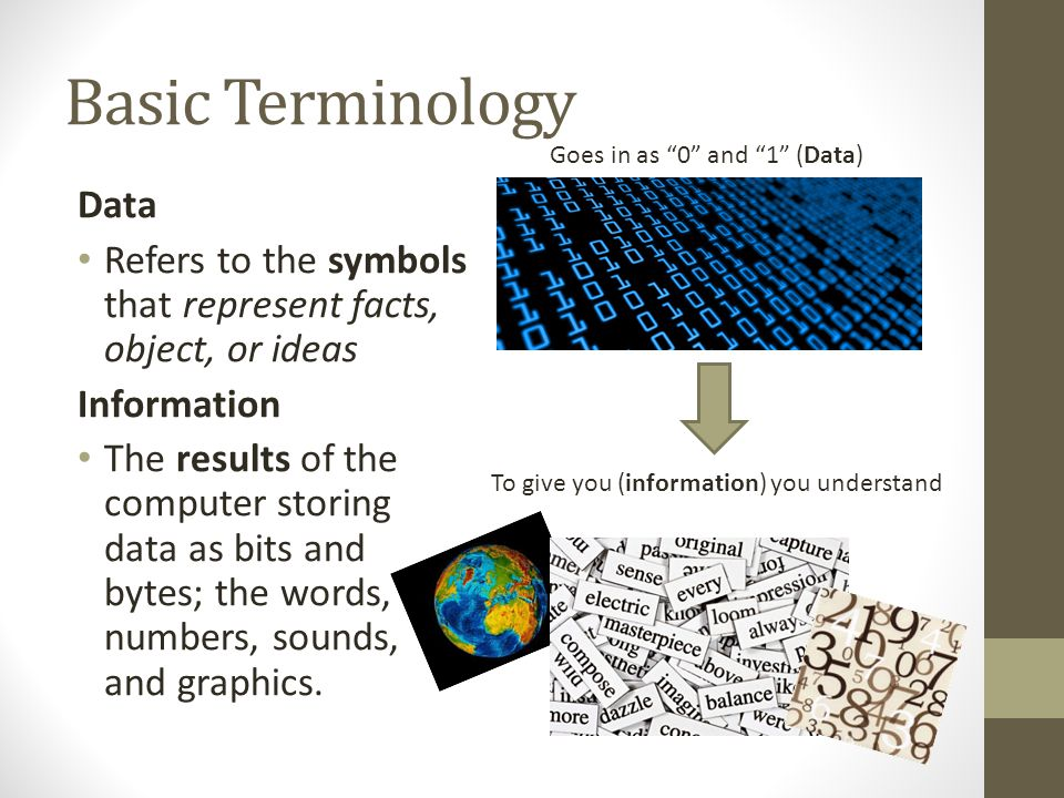 Basic Terminology Data