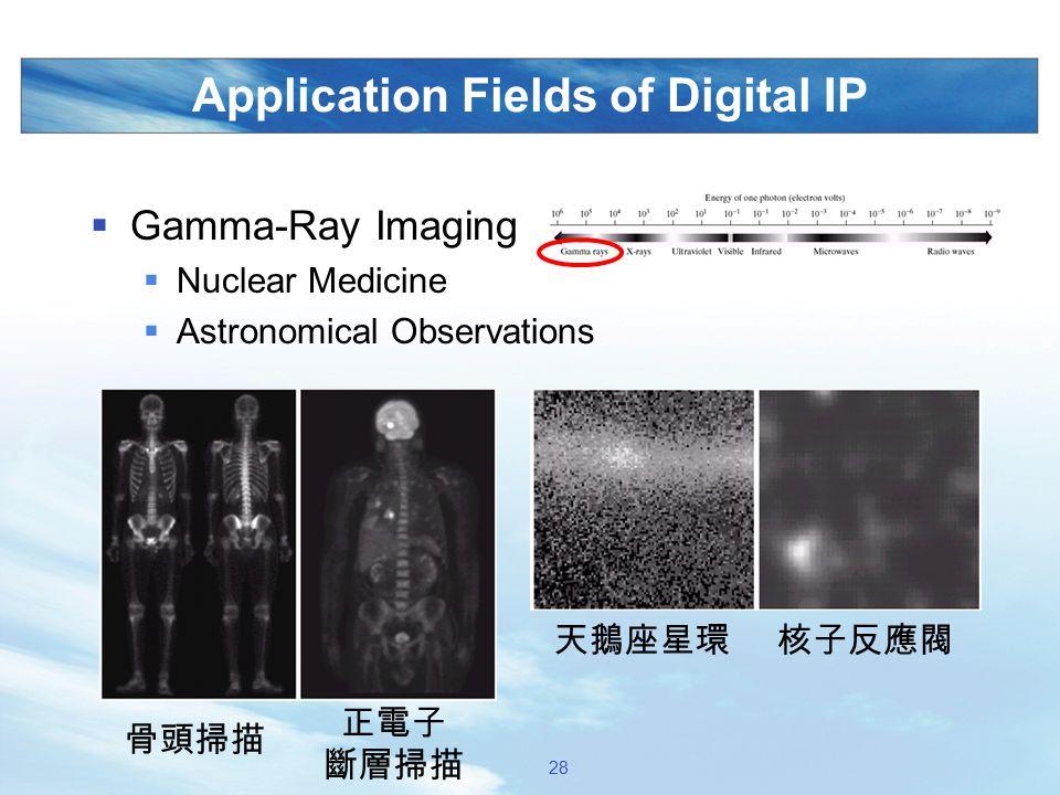 Application Fields of Digital IP