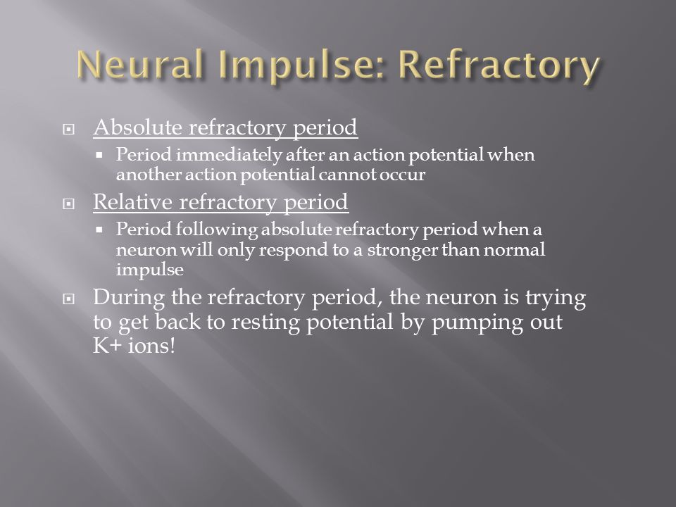 Neural Impulse: Refractory