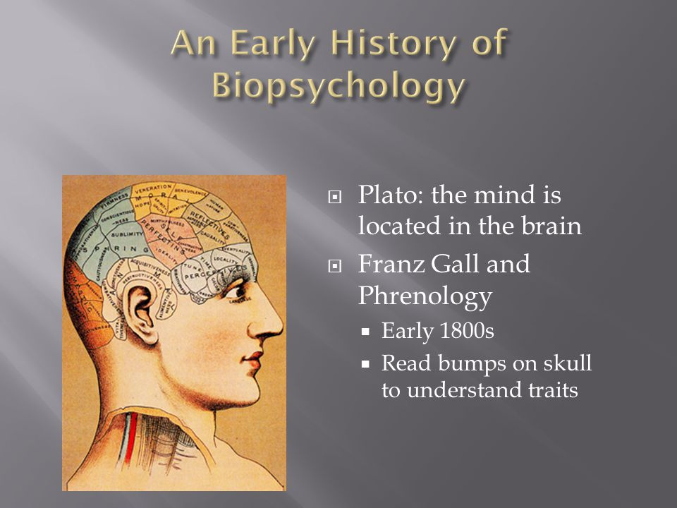 An Early History of Biopsychology
