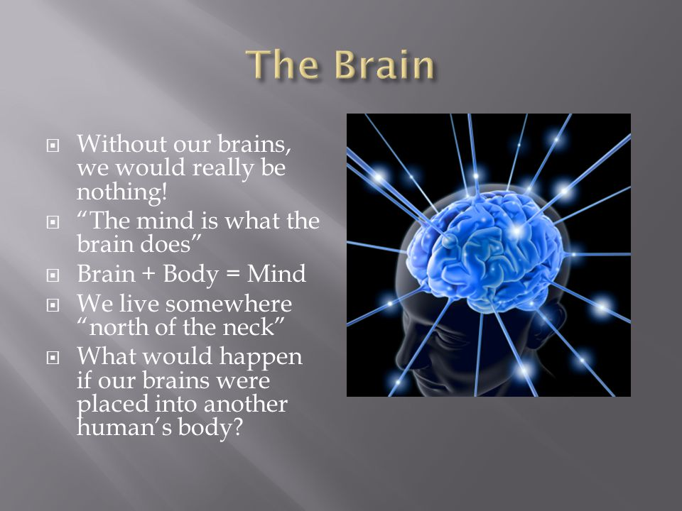 The Brain Without our brains, we would really be nothing!