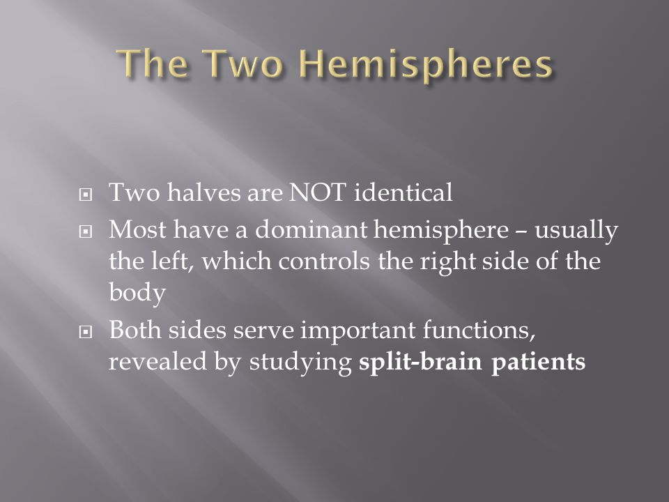 The Two Hemispheres Two halves are NOT identical