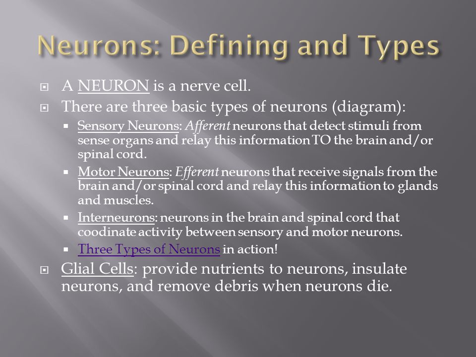Neurons: Defining and Types