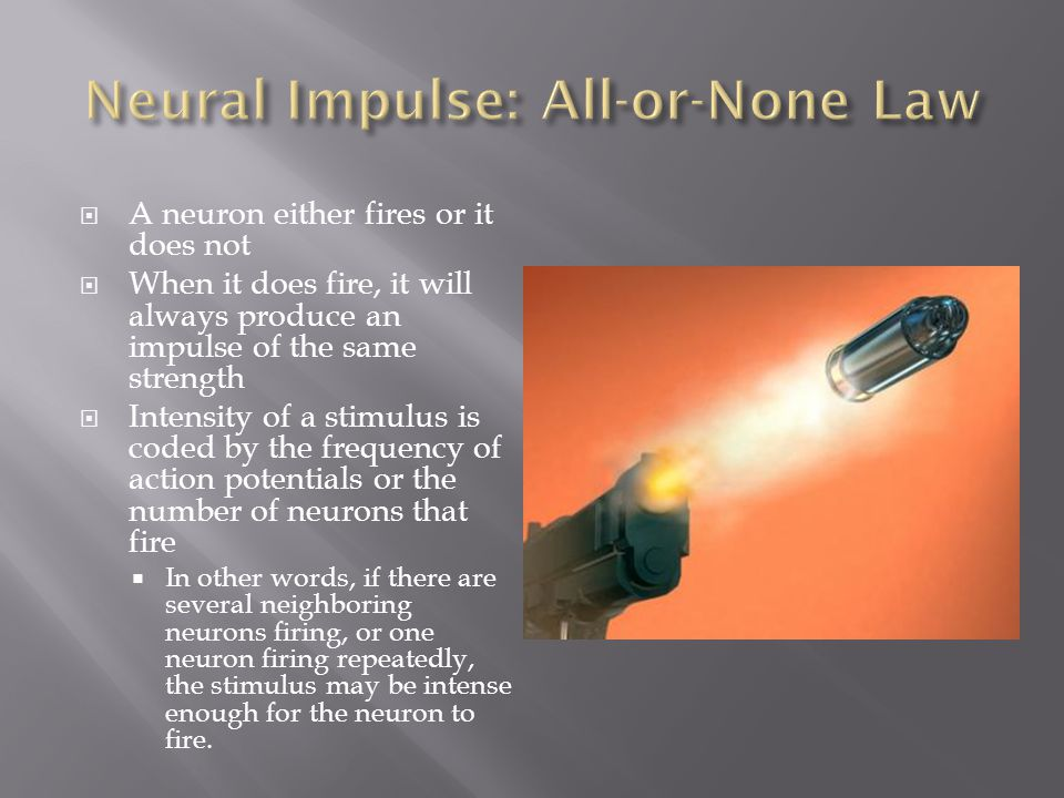 Neural Impulse: All-or-None Law