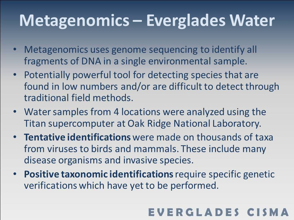 Metagenomics – Everglades Water