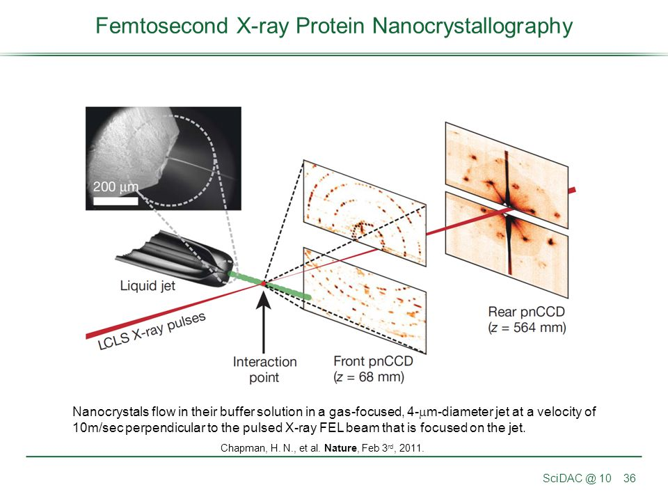 Femtosecond X-ray Protein Nanocrystallography