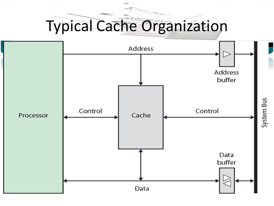 Typical Cache Organization