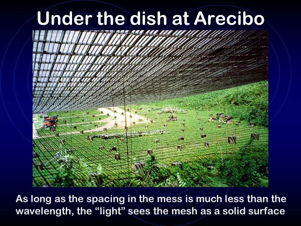 Under the dish at Arecibo