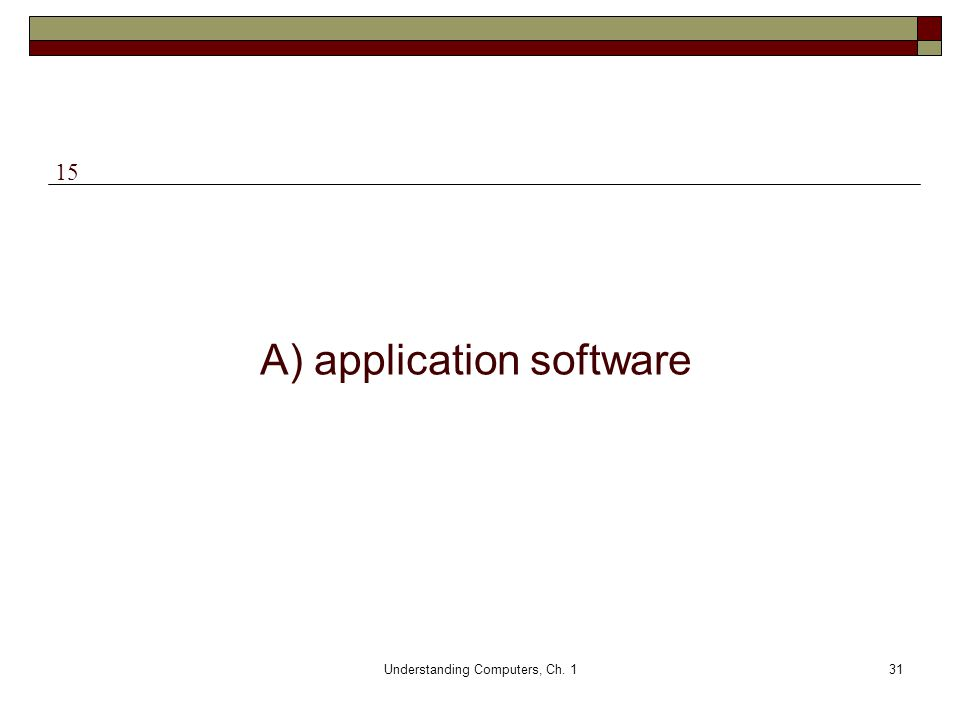 A) application software