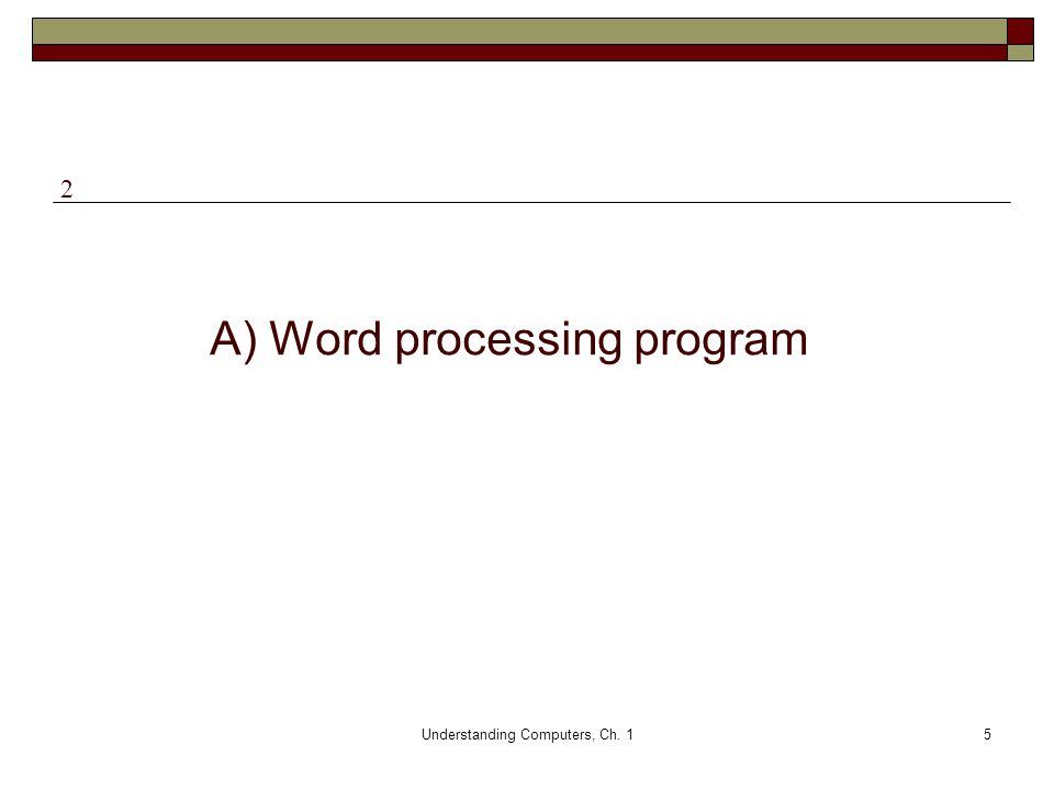 A) Word processing program
