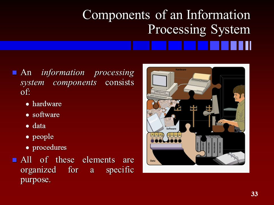an introduction to computers and information processing The information processing theory is a cognitive approach to understanding how the human mind computers were introduced to the study of development and.