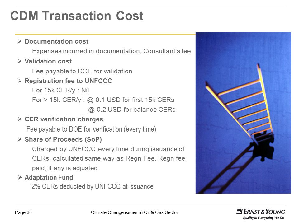 CDM Transaction Cost Adaptation Fund