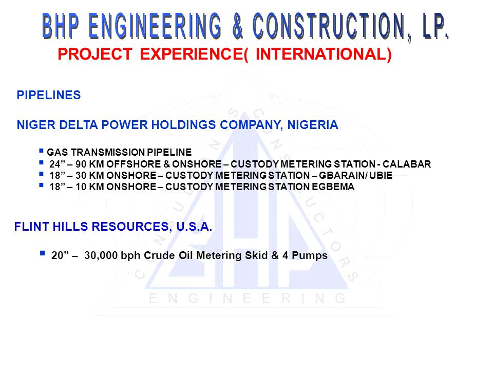 PROJECT EXPERIENCE( INTERNATIONAL)