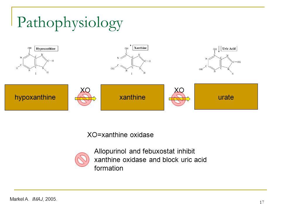 Pathophysiology XO XO hypoxanthine xanthine urate XO=xanthine oxidase