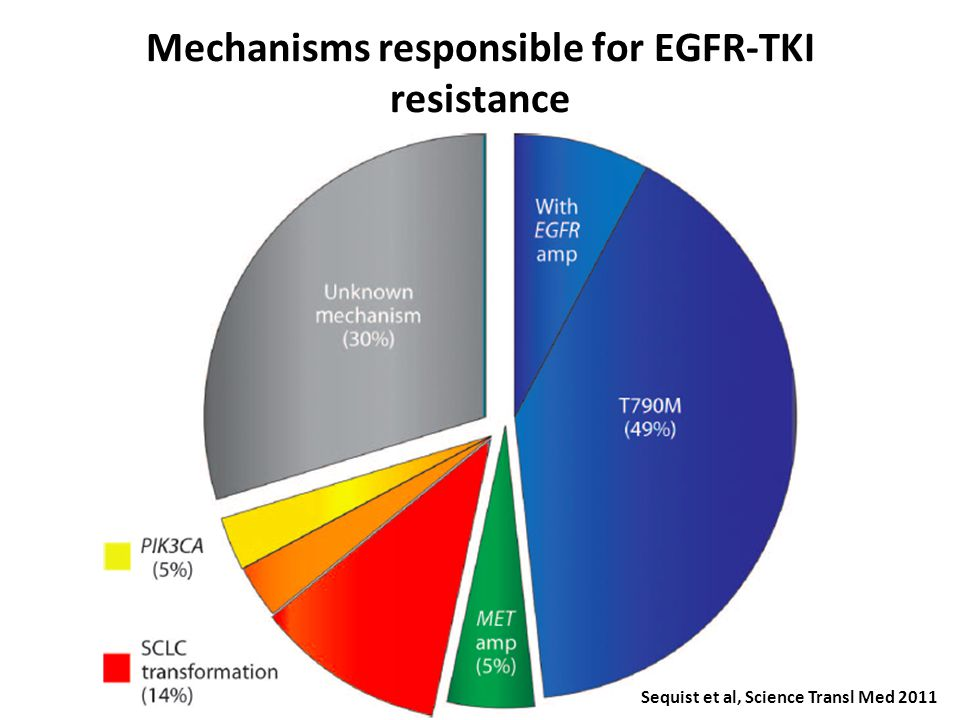 Mechanisms responsible for EGFR-TKI resistance