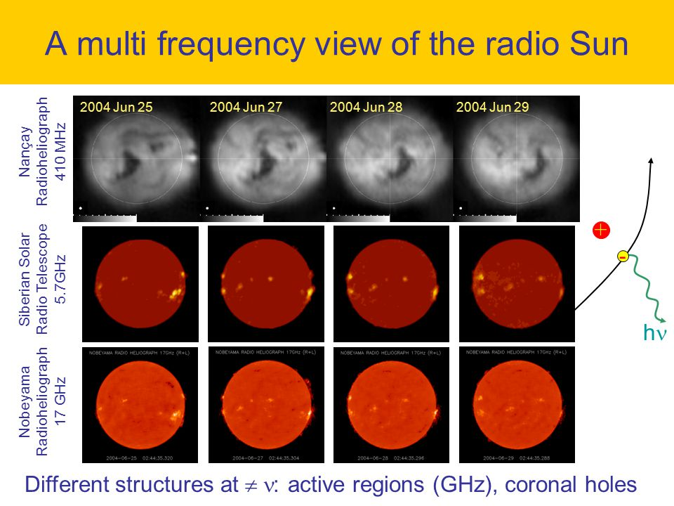 A multi frequency view of the radio Sun