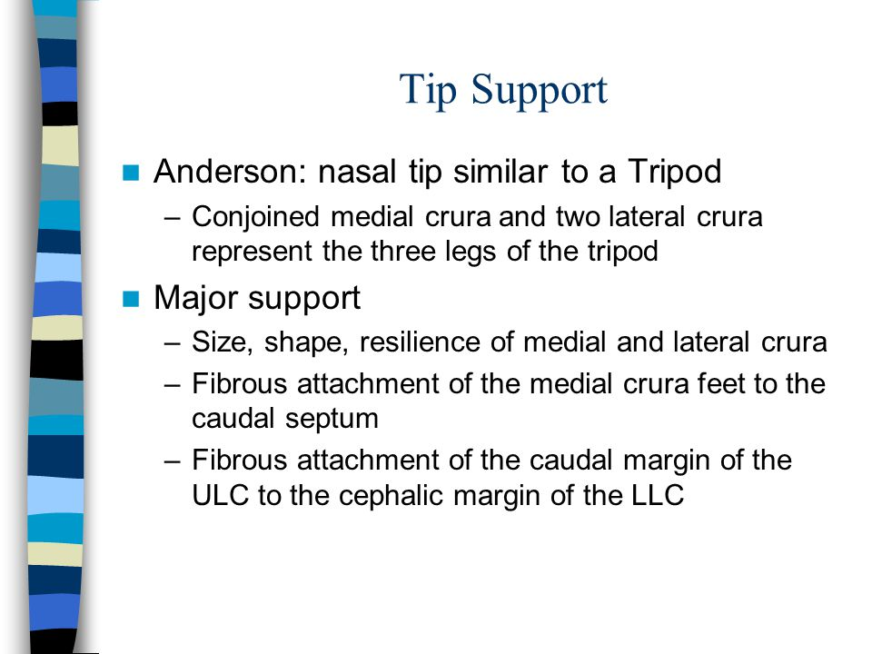 Tip Support Anderson: nasal tip similar to a Tripod Major support