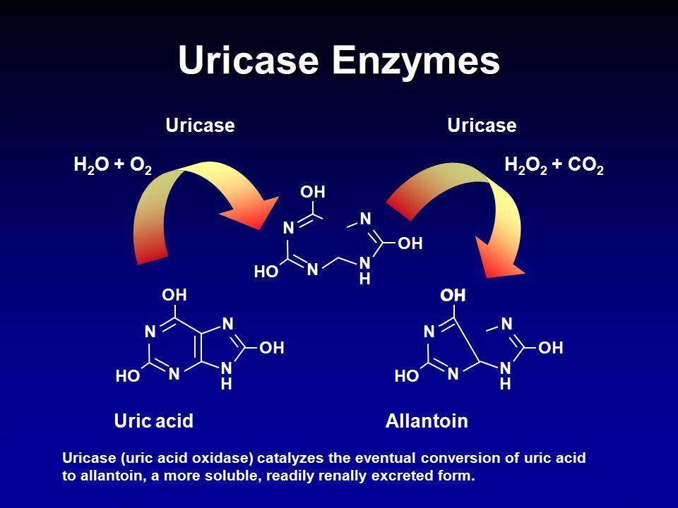 Uricase Enzymes Uricase Uricase H2O + O2 H2O2 + CO2 Uric acid