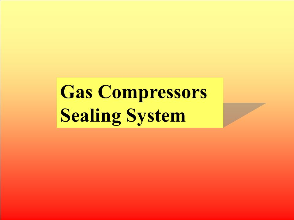 Gas Compressors Sealing System