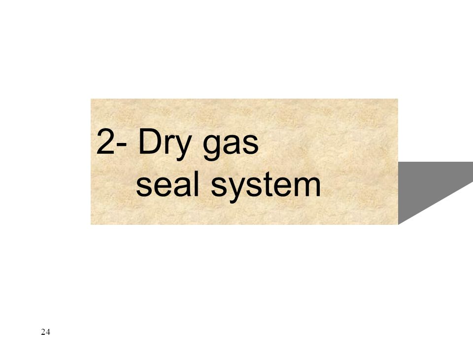 2- Dry gas seal system 24