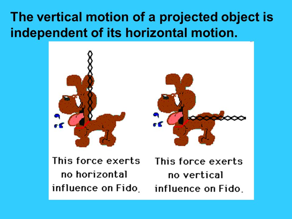 The vertical motion of a projected object is independent of its horizontal motion.