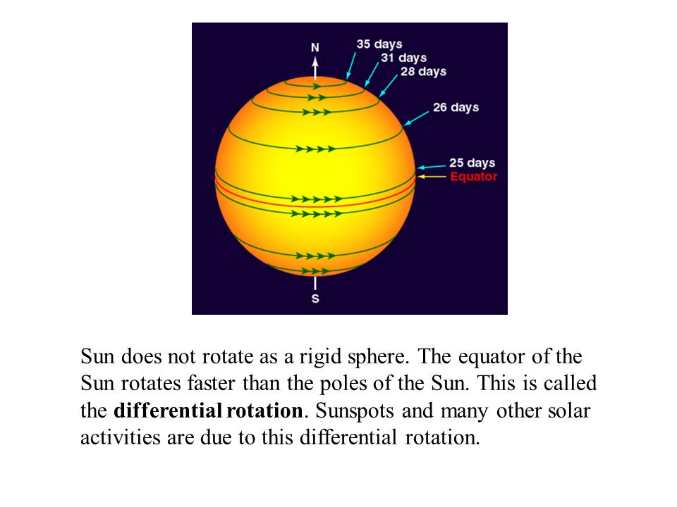 Sun does not rotate as a rigid sphere