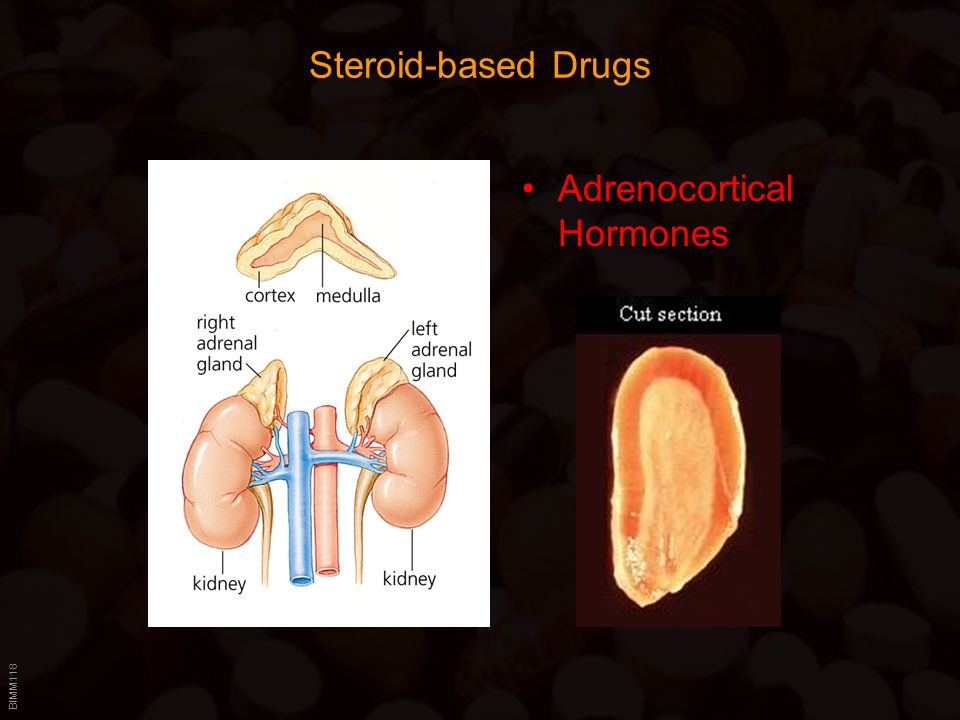 Steroid-based Drugs Adrenocortical Hormones