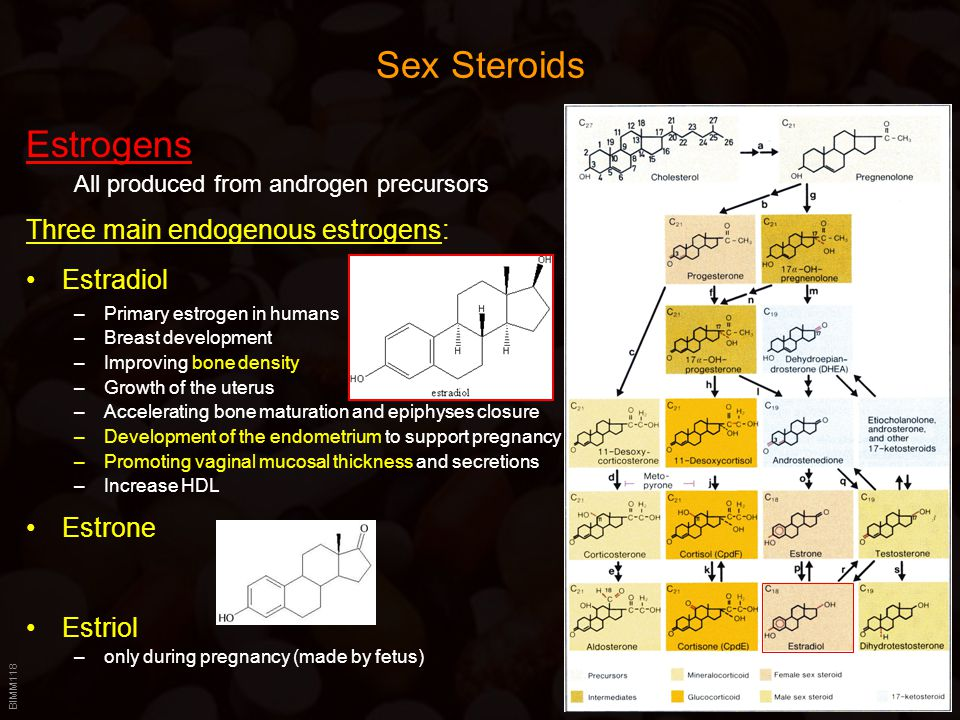 Sex Steroids Estrogens Three main endogenous estrogens: Estradiol