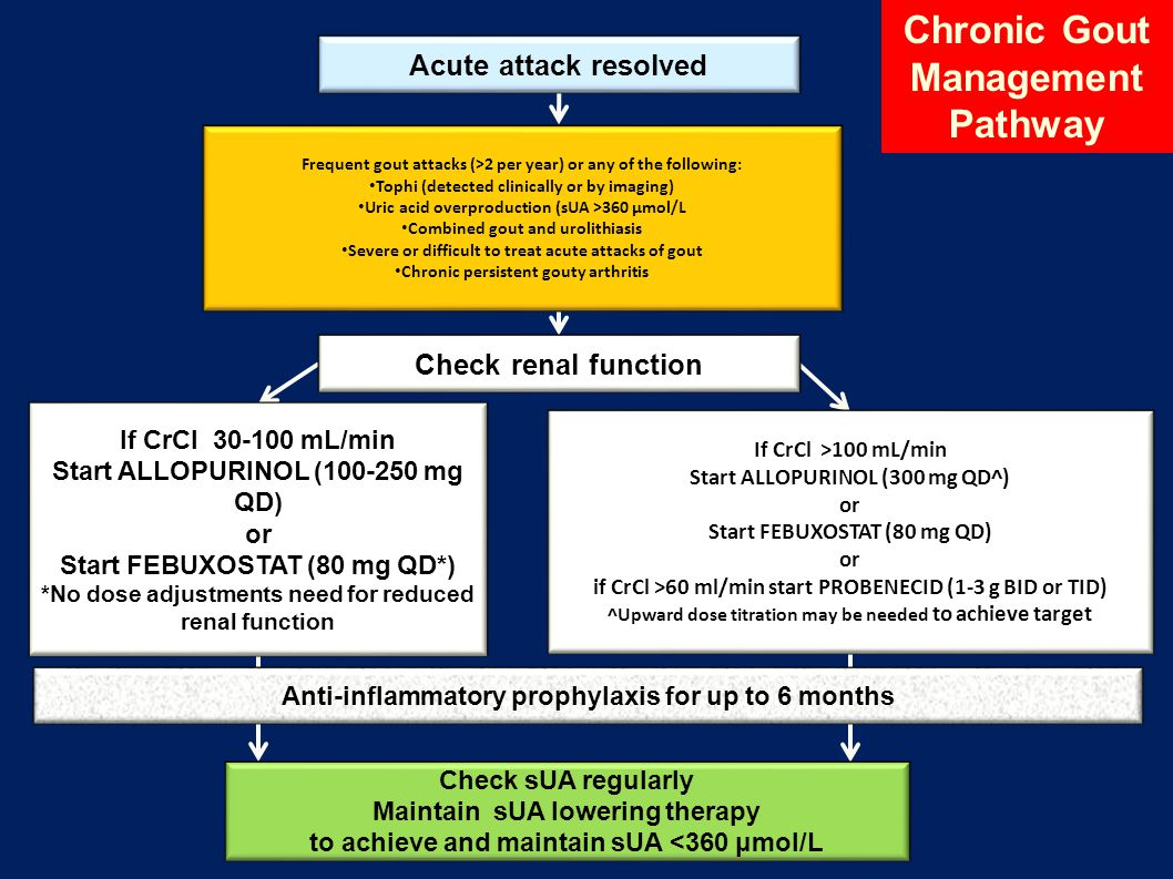 Chronic Gout Management Pathway