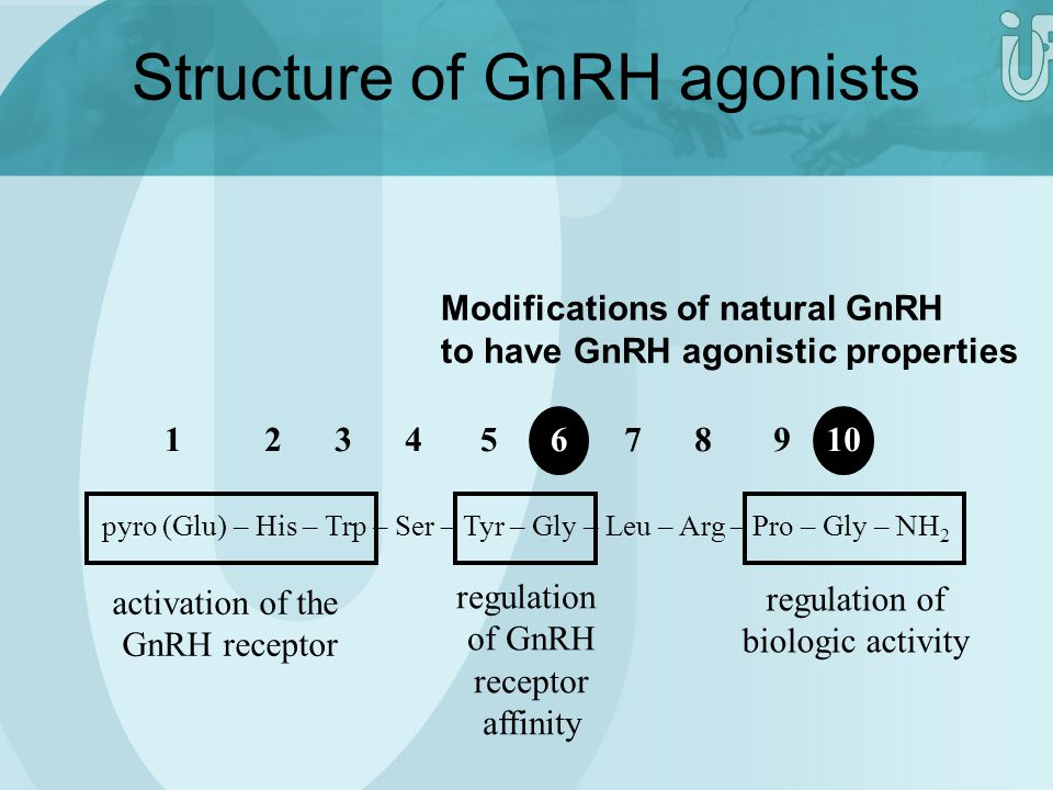 Structure of GnRH agonists
