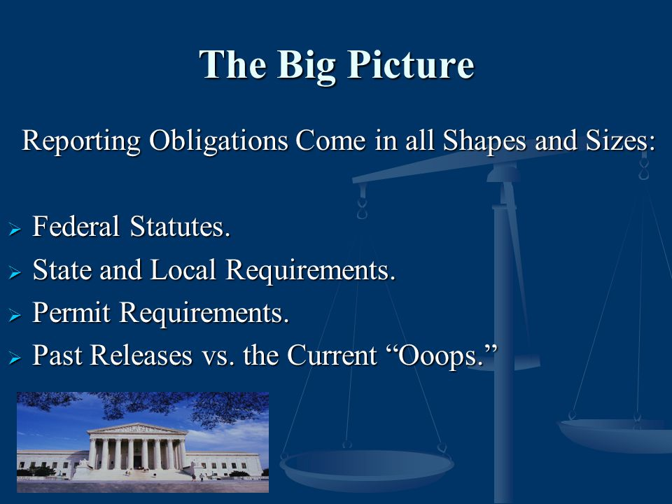 The Big Picture Reporting Obligations Come in all Shapes and Sizes: