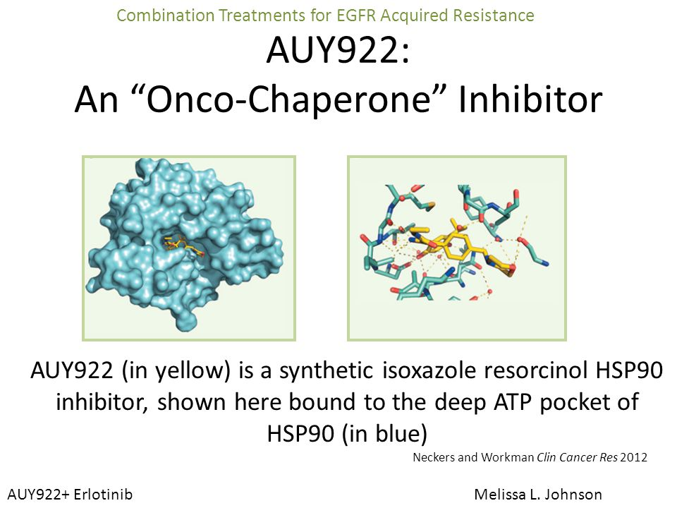 An Onco-Chaperone Inhibitor