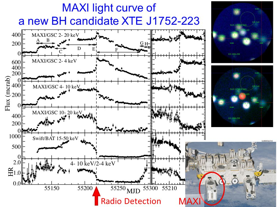 MAXI light curve of a new BH candidate XTE J1752-223