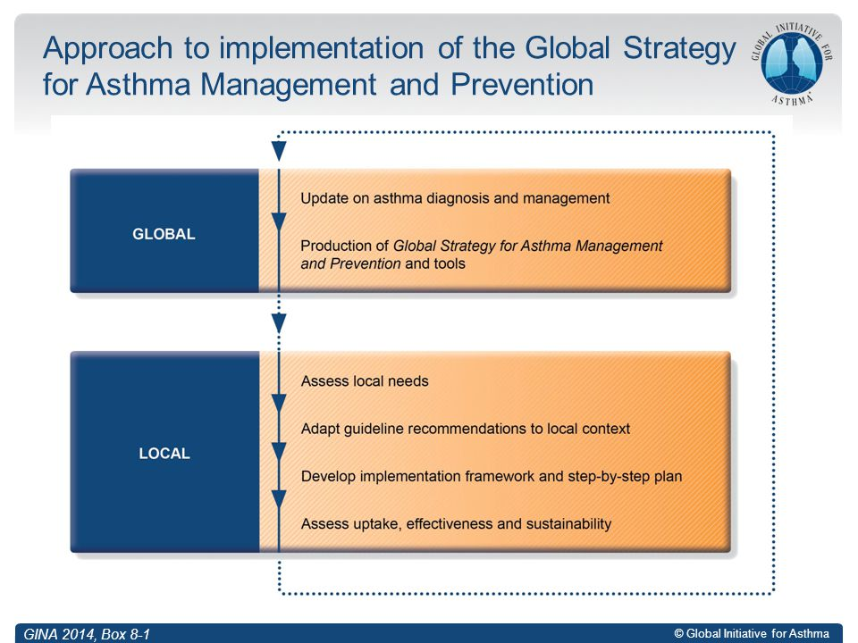 Approach to implementation of the Global Strategy for Asthma Management and Prevention