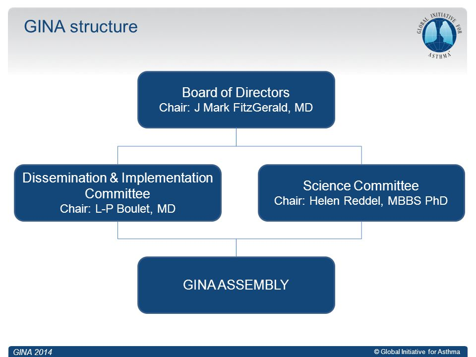 GINA structure Board of Directors